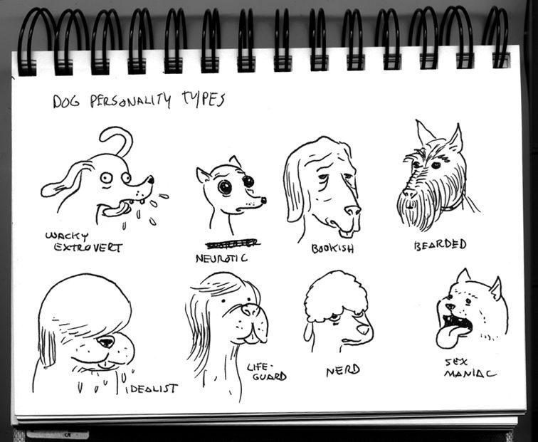 dog_personality